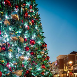 Spectacular Musical Tree Shows @ Village at Leesburg Shopping Center | Leesburg | Virginia | United States