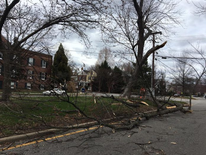 Closures Power Outages Throughout Alexandria On Friday Alexandria